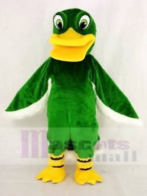 Funny Green Duck Mascot Costume School