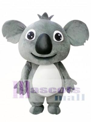 Small Koala Mascot Costume