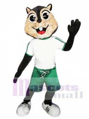 High Quality Squirrel Mascot Costume