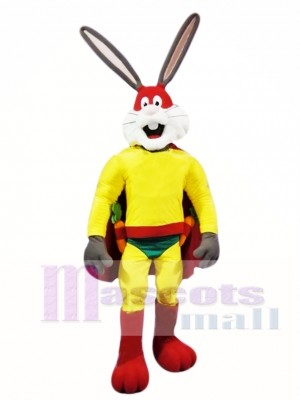 Superhero Rabbit Mascot Costume