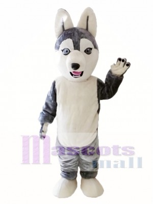 Animal Dog Siberian Husky Mascot Costume for Adult