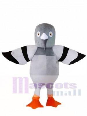 Cartoon Grey Pigeon Mascot Costume
