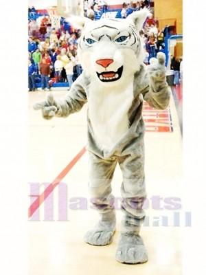 Gray Wildcat Mascot Costume