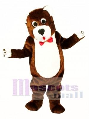 Grentle Brown Teddy Bear Mascot Costume Animal Costume