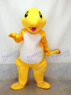Charmander Pokemon Pokémon GO Pocket Monster Dragon Fire Mascot Costume
