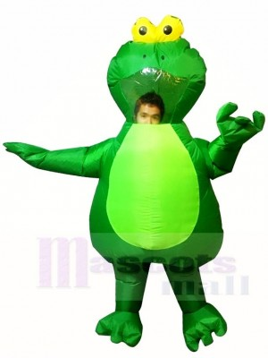 Green Frog Inflatable Halloween Xmas Costumes for Adults
