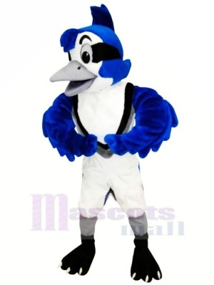 Cute Blue Jay Mascot Costumes Animal