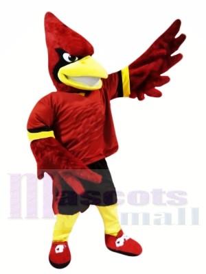 College Cardinal Mascot Costumes