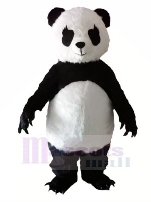 Panda with Long Eyelashes Mascot Costumes Animal