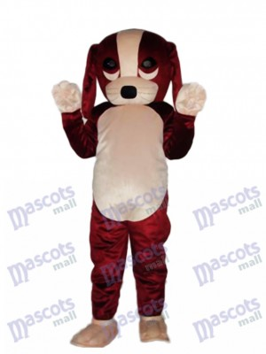 Fortune Dog Mascot Adult Costume Animal
