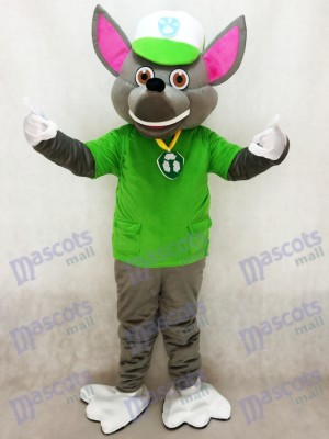 Paw Patrol Rocky Recycling Ecology Pup Mascot Character Costume Eco Pup