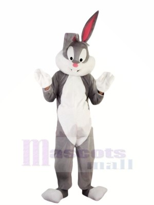 Hot Professional Easter Bunny Mascot Costumes Cheap