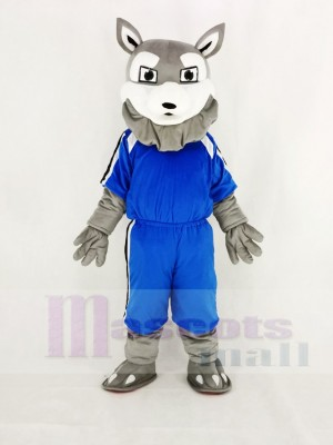 Power Gray Husky Dog in Blue Mascot Costume Cartoon