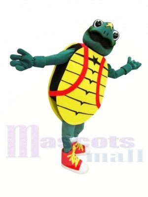 Childrens Hosp Turtle Mascot Costumes