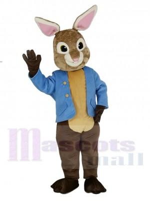 Brown and Gray Peter Rabbit Mascot Costume