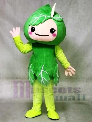 Green Leaves Mascot Costumes Plant