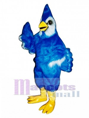 New Blue Jay Mascot Costume Bird