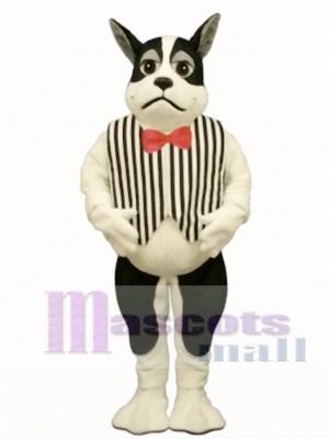Cute Harrington Dog with Vest Mascot Costume Animal