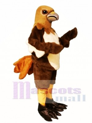 Cute Red Tail Hawk Mascot Costume Animal