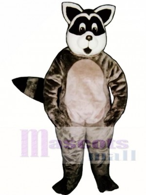 Sunny Raccoon Mascot Costume Animal