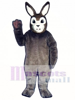 Easter J.R. Bunny Rabbit Mascot Costume Animal