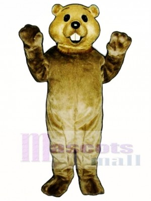 Cute Groundhog Mascot Costume Animal