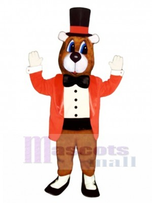 Cute Dancing Bear Mascot Costume Animal