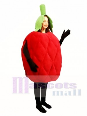 Raspberry Mascot Costume Fruit