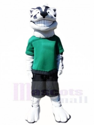 Grinning Badger Sports Mascot Costumes Animal