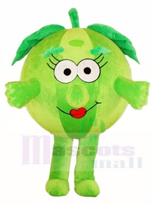 Green Watermelon Mascot Costumes Fruit