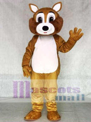 Adult Squirrel Mascot Costume with White Belly Animal