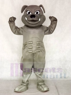 Grey Bulldog Mascot Costumes Animal