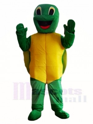 Tortoise Turtle Mascot Costumes Animal