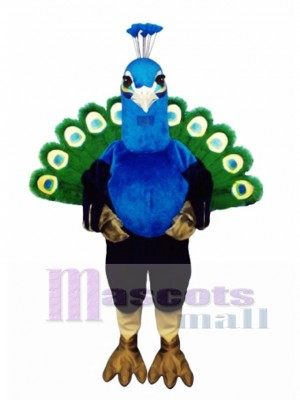 Cute Peacock Mascot Costume Bird