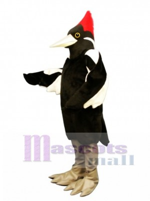 Cute Ivory Billed Woodpecker Mascot Costume Bird