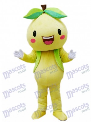 Yellow Pomelo Shaddock Grapefruit Mascot Costume Fruit