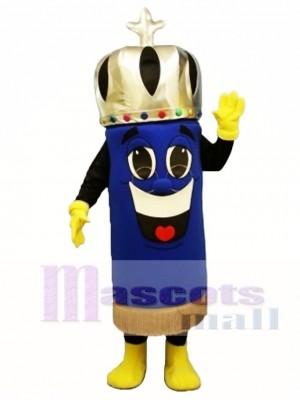 Torah Mascot Costume