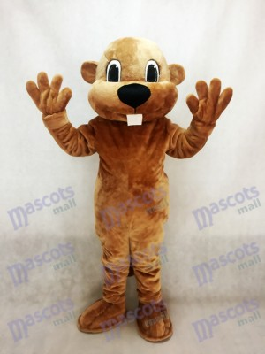 Alex the Beaver Mascot Costume Animal