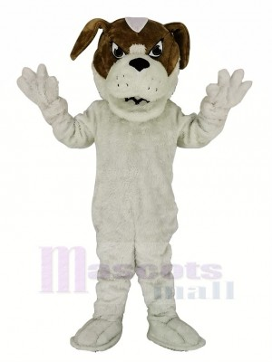Saint Bernard Dog Mascot Costume Cartoon