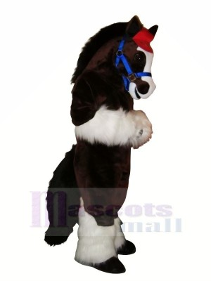 Cute Horse with Long Tail Mascot Costumes Cartoon