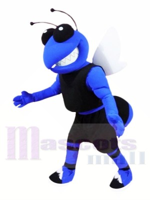 College Blue Hornet Mascot Costumes