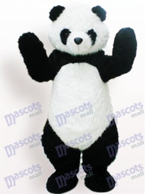 Black And White Panda Animal Adult Mascot Funny Costume