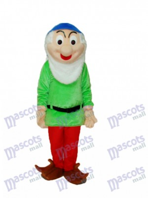 Dwarfs 1 Mascot Adult Costume Cartoon Anime