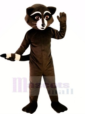 Wild Black Racoon Mascot Costumes Cartoon