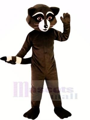 Wild Black Racoon Mascot Costumes Cartoon