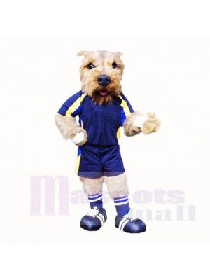 Football Dog With Blue T-shirt Mascot Costumes School