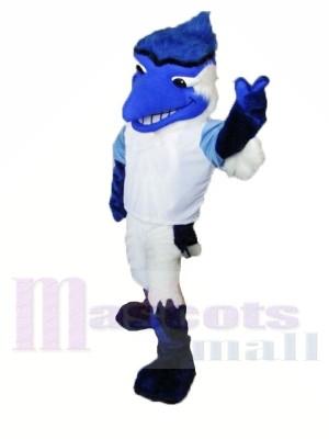 College Blue Jay Mascot Costumnes