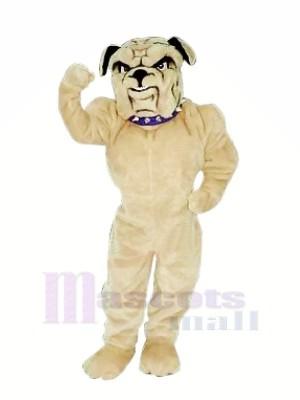 Realistic Bulldog Mascot Costumes Cartoon