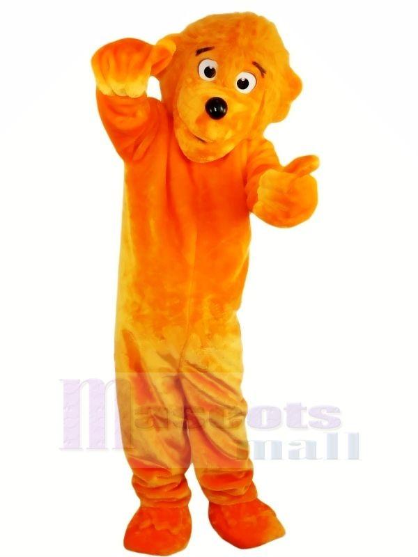 Funny Lion Mascot Costumes