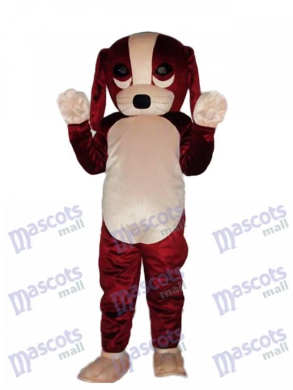 Fortune Dog Mascot Adult Costume